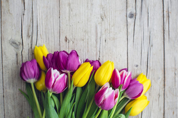Pink and yellow tulips on a wooden background