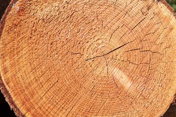 Holz mit Struktur als Hintergrund