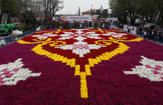 Municipality workers put the final touches on a huge carpet design formed by tulips at Sultanahmet square during the 13th Tulip Festival in Istanbul