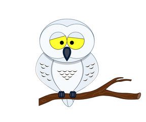 Funny cartoon arctic owl.