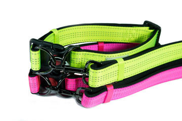 Pet accessories concept. Pet collars and leashes on isolated white background.