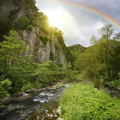 Wall Mural - Regenbogen
