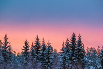 Colorful sky after sunset in winter landscape