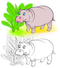 Colorful and black and white pattern for coloring. Illustration of cute hippo. Worksheet for children and adults. Vector image.