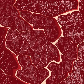 texture of meat, background