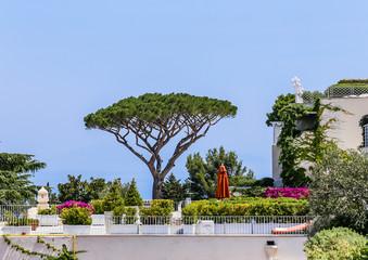 Villa of Capri Island , Anacapri. Italy