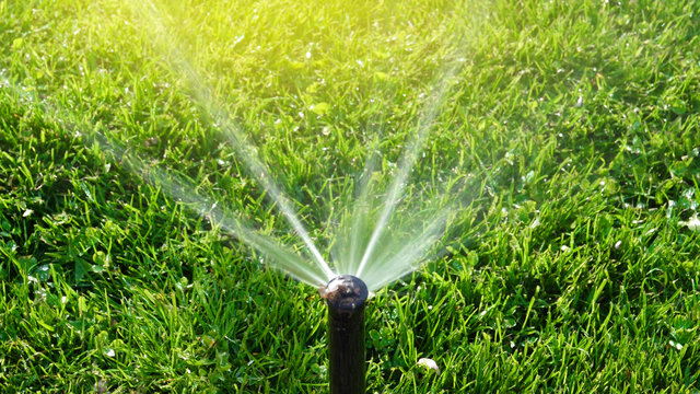Working smart garden activated with full automatic sprinkler irrigation system working early in the morning in green park watering lawn sunlight flare