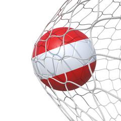 Austria Austrian flag soccer ball inside the net, in a net.