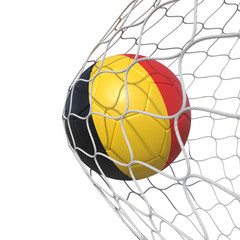 Belgian Belgium flag soccer ball inside the net, in a net.
