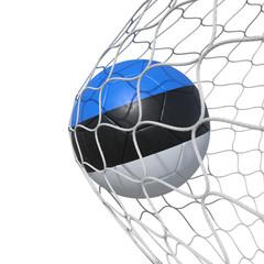 Estonia Estonian flag soccer ball inside the net, in a net.