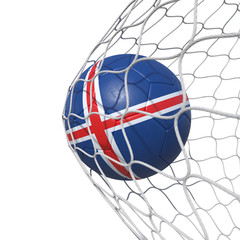 Island flag soccer ball inside the net, in a net.