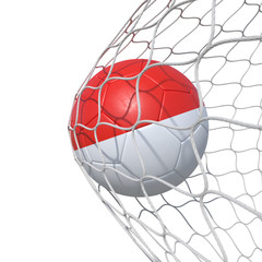 Monaco flag soccer ball inside the net, in a net.