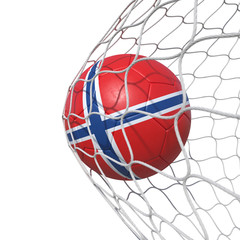 Norway Norwegian flag soccer ball inside the net, in a net.