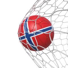 Norway Norwegian flag soccer ball inside the net, in a net.