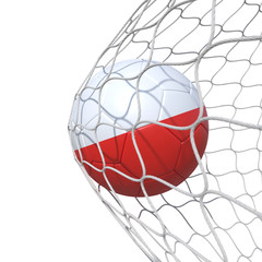 Polish Poland flag soccer ball inside the net, in a net.