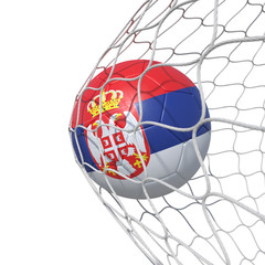 Serbia Serbian flag soccer ball inside the net, in a net.