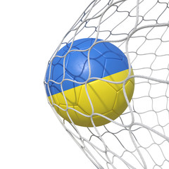 UA Ukraine Ukrainian flag soccer ball inside the net, in a net.