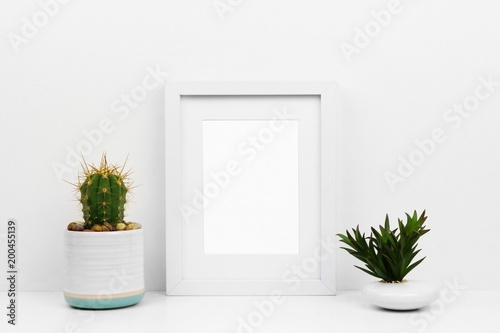 Mock up white frame with cactus and succulent on a shelf or desk ...