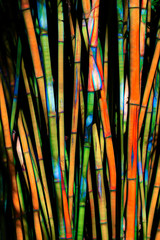 Abstract Rendition of Bamboo Forest