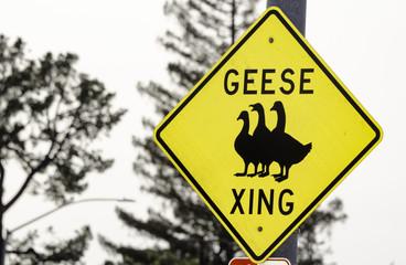 Geese Crossing Road Sign