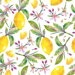 Lemons  with green leaves, lemon slices and flowers. Seamless pattern branch lemon tree on white background. Illustration hand drawn watercolor.