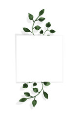 A square frame and watercolor-drawn green leaves on a white background. Isolated and space for your text.