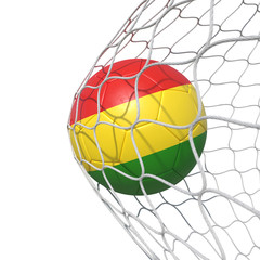 Bolivian Bolivia flag soccer ball inside the net, in a net.