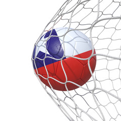 Chile Chilean flag soccer ball inside the net, in a net.
