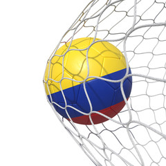 Colombia Colombian flag soccer ball inside the net, in a net.