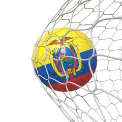 Ecuador Ecuadorian flag soccer ball inside the net, in a net.