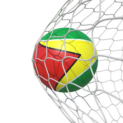 Guyana Guyanese flag soccer ball inside the net, in a net.