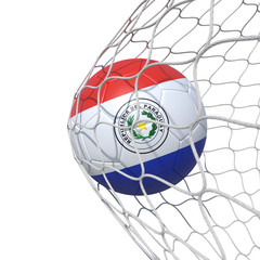 Paraguay Paraguayan New flag soccer ball inside the net, in a net.