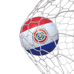 Paraguay Paraguayan Old flag soccer ball inside the net, in a net.