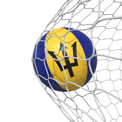 Barbados Barbadian flag soccer ball inside the net, in a net.