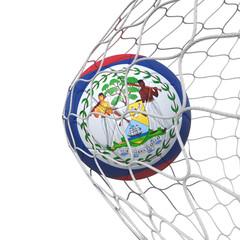 Belize Belizean flag soccer ball inside the net, in a net.