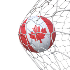 Canadian Canada flag soccer ball inside the net, in a net.