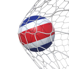 Costa Rica flag soccer ball inside the net, in a net.