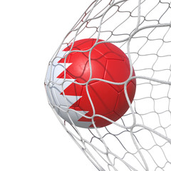 Bahrain Bahrainis flag soccer ball inside the net, in a net.