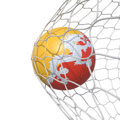 Bhutan Bhutanese flag soccer ball inside the net, in a net.
