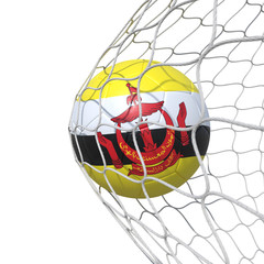 Brunei Bruneian flag soccer ball inside the net, in a net.