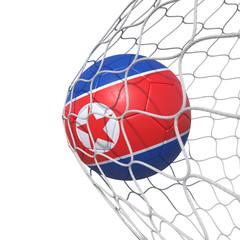 Korea Korean flag soccer ball inside the net, in a net.