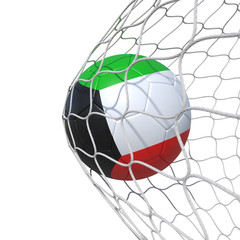 Kuwait Kuwaiti flag soccer ball inside the net, in a net.