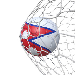 Nepalese Nepal flag soccer ball inside the net, in a net.