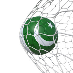 Pakistan Pakistani flag soccer ball inside the net, in a net.