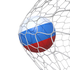 Russia Russian flag soccer ball inside the net, in a net.