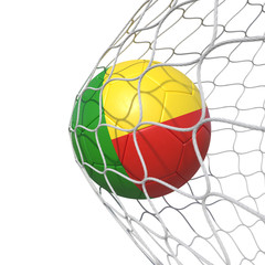 Benin Beninese flag soccer ball inside the net, in a net.