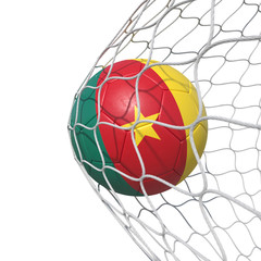 Cameroon Cameroonian flag soccer ball inside the net, in a net.