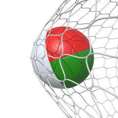 Madagascar Madagascan flag soccer ball inside the net, in a net.