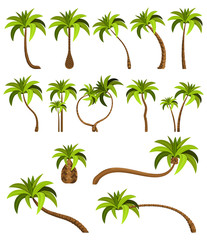 Palm trees isolated on white background. Beautiful vectro palma tree set vector illustration