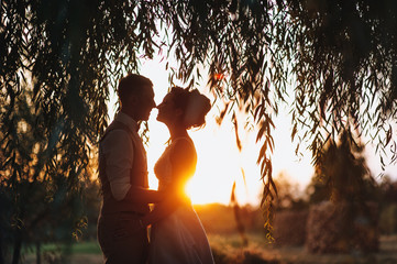 Beautiful silhouette of the bride and groom under the willow. Newlyweds at sunset. Summer wedding. Silhouette.